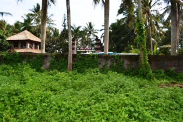 Land for Sale in Ubud Near the monkey forest
