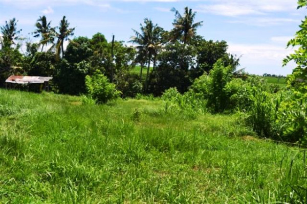 1000 sqm land for sale in Pererenan Canggu  – TJCG009