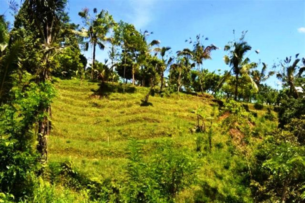 Land for sale in UBUD, 750 ares NEAR Ayung River – TJUB045