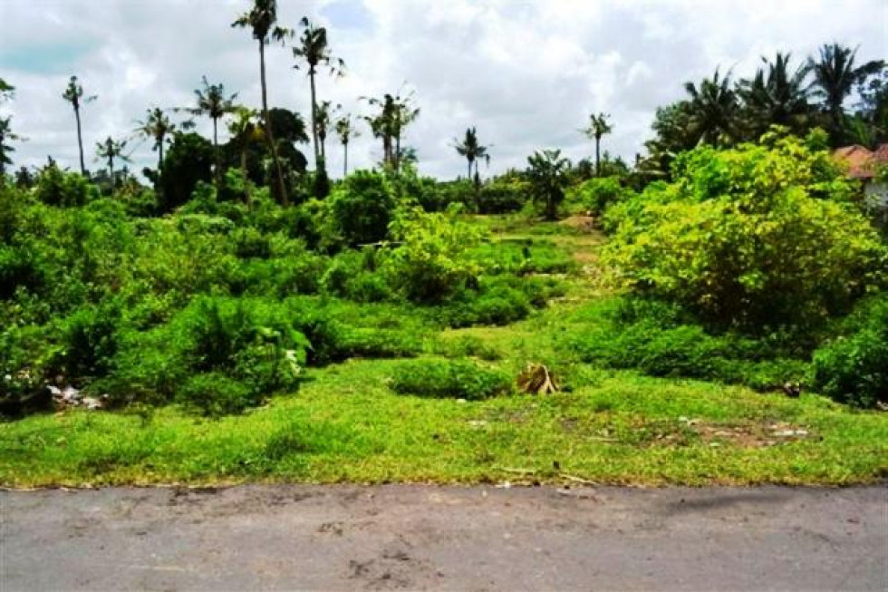 Land for sale in ubud 180 are for investment – TJUB057