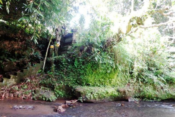 Land for sale in Ubud Sebatu overlooking rice field, river valley and natural water fountain – TJUB093