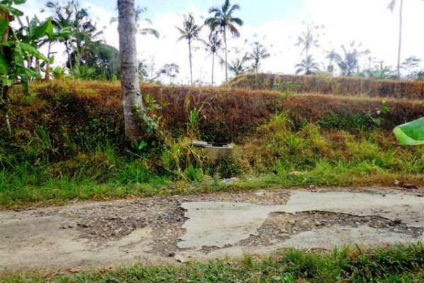 Land for sale in ubud with rice field view – TJUB099
