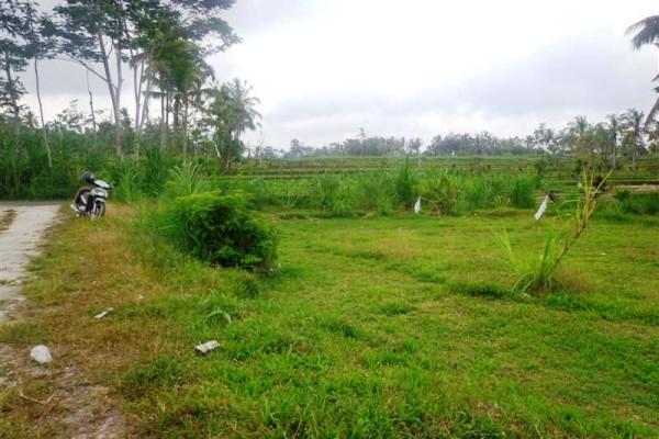 land for sale in Ubud suitable for villa – TJUB107