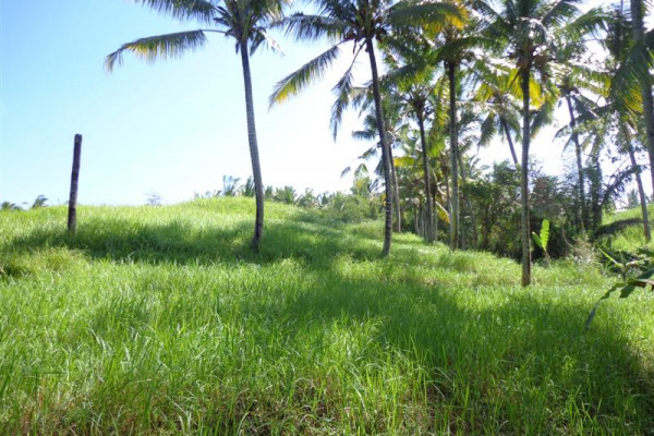 River view land for sale in Ubud Bali – TJUB113