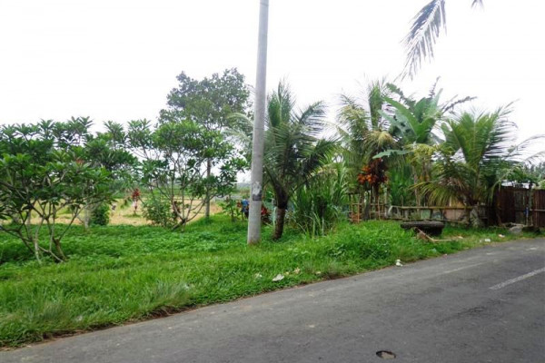Land for sale in Ubud Tegalalang perfect for villa – TJUB142