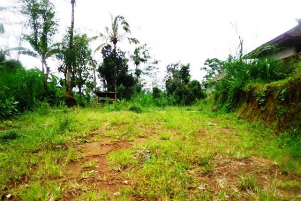 LUB166 – Land for sale in Ubud Bali perfect place for your dream villa