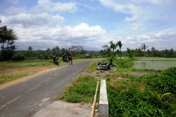 Land for sale in Ubud Bali first class development Land – LUB192