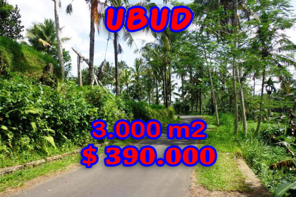 Land for sale in Ubud Bali – TJUB220 Rice paddy and River Valley