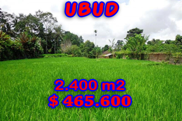 Bali Land for sale 2.400 sqm in Ubud Tegalalang