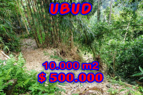 Land for sale in Ubud Bali by the river valley in Ubud Tegalalang