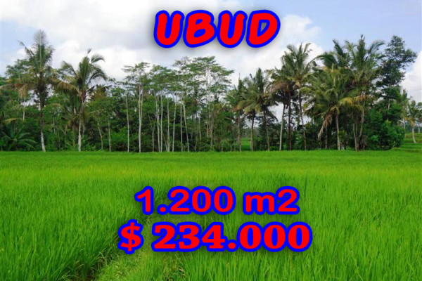 Land for sale in Ubud 1.200 sqm with terraced paddy view