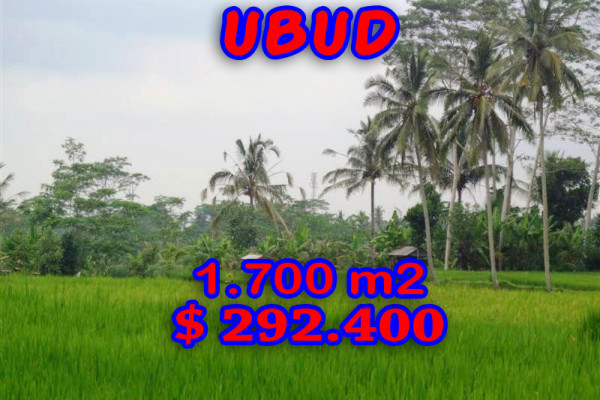 Land for sale in Ubud Bali 1.700 sqm in Ubud Tegalalang