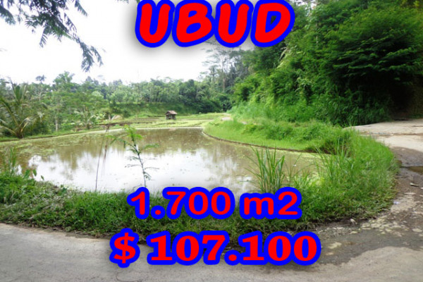 Land for sale in Ubud 1,700 m2 Stunning on the valley – TJUB189E