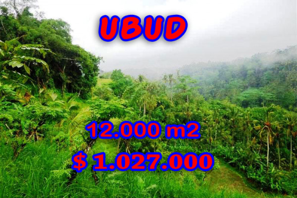 Land for sale in Bali, Extraordinary view in Ubud Bali – 12.000 sqm @ $ 86