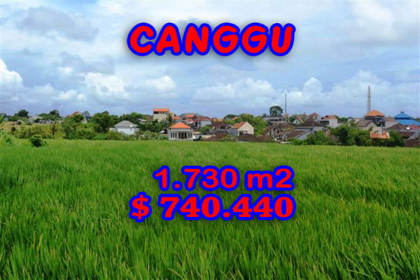 Terrific Property for sale in Bali, land for sale in Canggu Bali  – 1.730 m2 @ $ 428