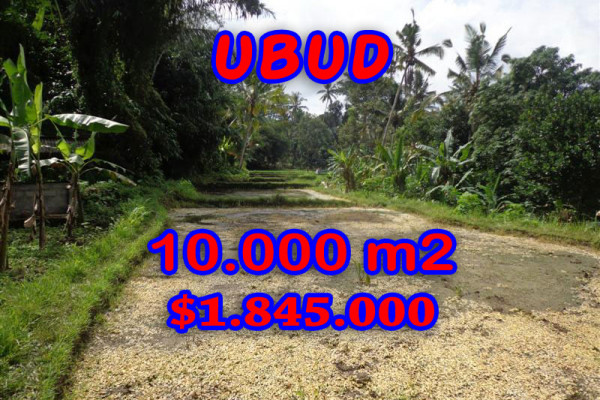 Land for sale in Bali, Unbelievable view in Ubud Bali – 10.000 sqm @ $ 184