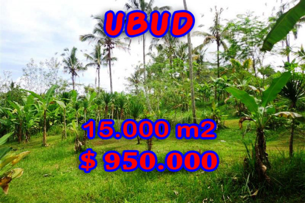 Land for sale in Bali, Amazing view in Ubud Bali – 15.000 sqm @ $ 63