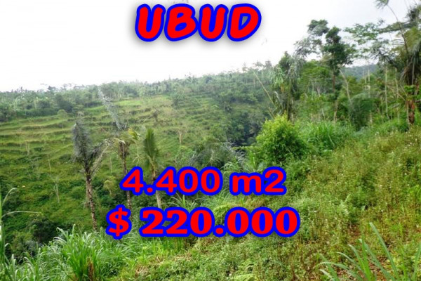 Attractive Property in Bali, Land sale in Ubud Bali – 4.400 sqm @ $ 50