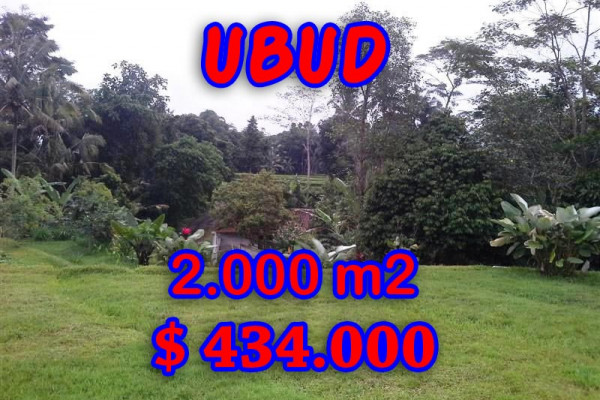 Land in Ubud for sale, Stunning view in Ubud Tegalalang Bali – TJUB298