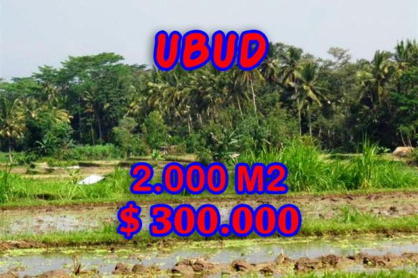 Land sale in Ubud Bali, Amazing view in Ubud Tampak siring – TJUB267