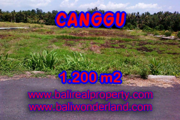 Land for sale in Bali, Exotic view in Canggu Bali – 1.200 sqm @ $ 283