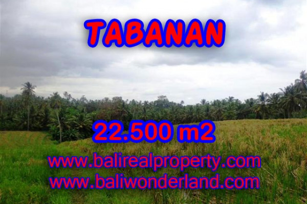 Land for sale in Bali, exceptional view in TABANAN – TJTB066