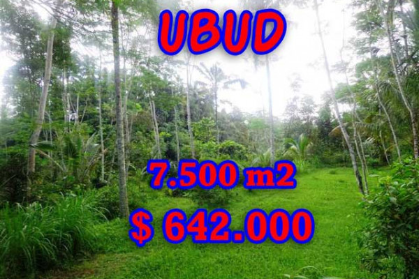 Magnificent Property in Bali, Land for sale in Ubud Bali – 7,500 m2 @ $ 86