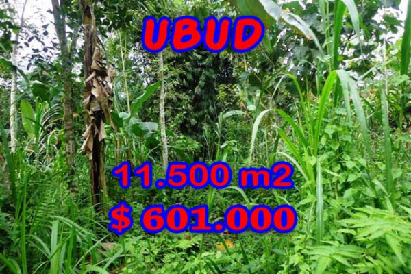 Land for sale in Bali, Magnificent view in Ubud Bali – 11.500 m2 @ $ 52