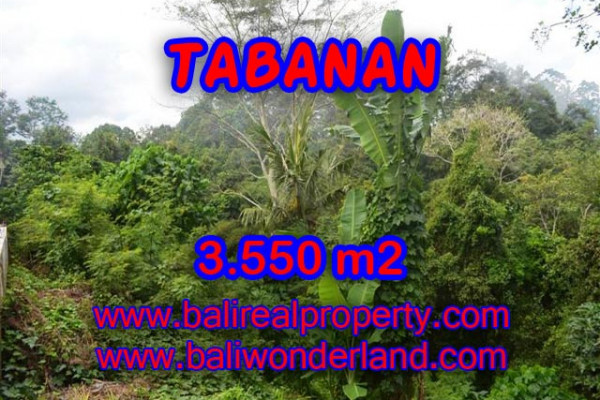 Land for sale in Tabanan Bali, exotic rice fields and river view in TABANAN – TJTB071