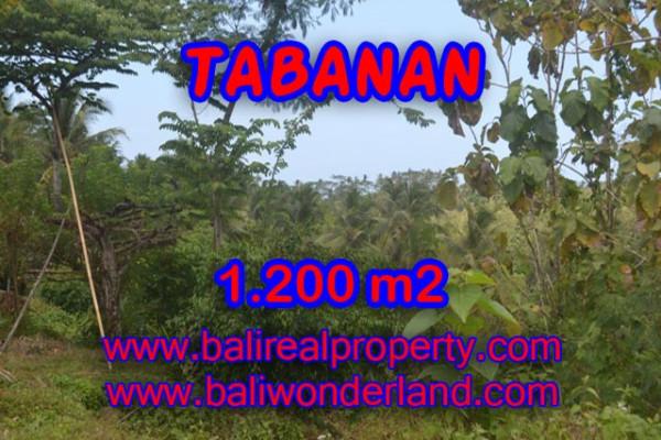 MagnificentLand for sale in Bali, river view in TABANAN BARAT Bali – TJTB072