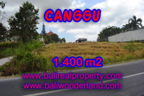 Attractive Property in Bali, Land for sale in Canggu Bali – 1,400 sqm @ $ 983