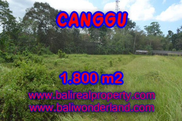 Land for sale in Bali, Exotic property in Canggu Bali – 1,800 sqm @ $ 594