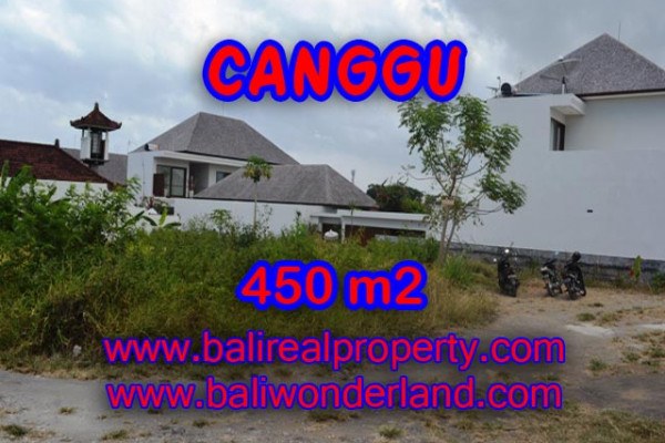 Exotic Property in Bali, Land for sale in Canggu Bali – 450 sqm @ $ 850