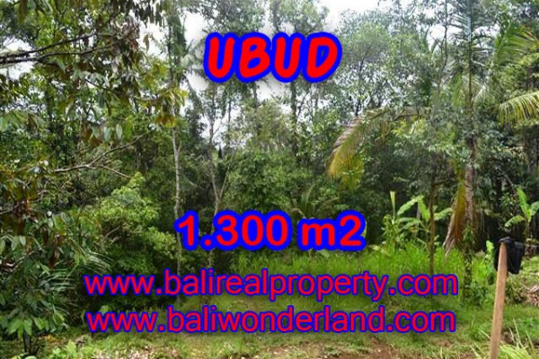 Land in Bali for sale, Stunning Property in Ubud Bali – 1.300 m2 @ $ 335