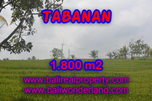 Land in Tabanan Bali for sale, Beautiful Beach and paddy view in SOKA TABANAN – TJTB083