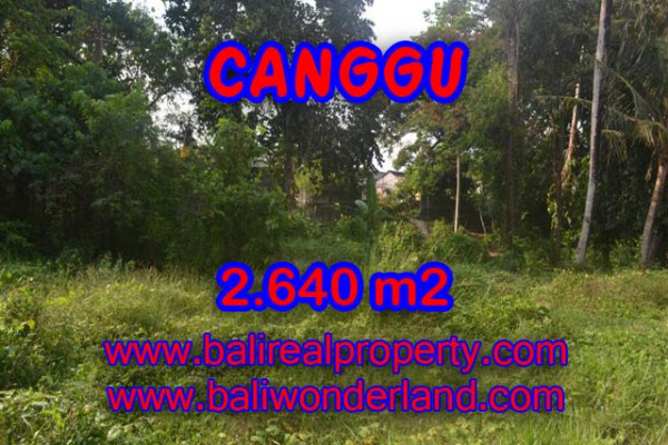 Amazing Property in Bali, Land for sale in Canggu Bali – 2.640 sqm @ $ 328
