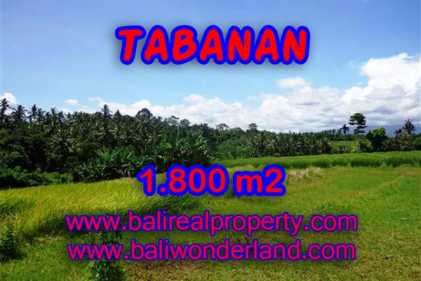 Land for sale in Bali, Outstanding view in Tabanan Bali – 1.800 m2 @ $ 75
