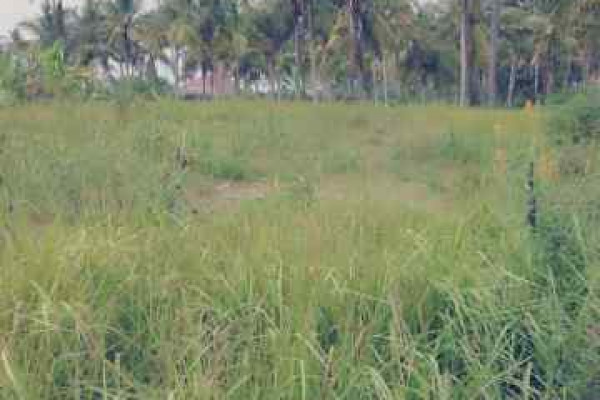 Land for SALE 700 m2 in Ubud, Bali – T1070