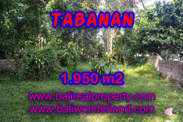 Land for sale in Bali, Fantastic view in Tabanan Bali – 1.950 m2 @ $ 165