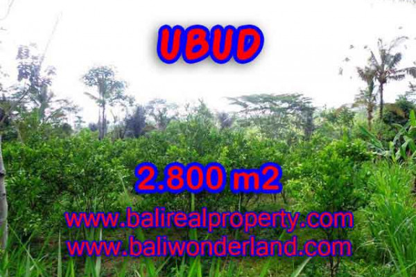 Terrific Property for sale in Bali, LAND FOR SALE IN UBUD Bali – 2.800 m2 @ $ 65