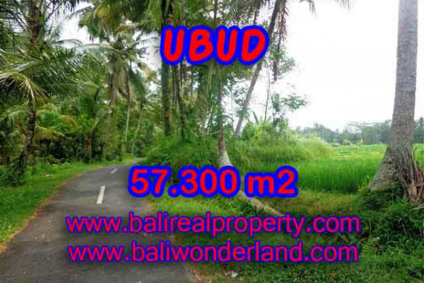 Extraordinary Property for sale in Bali, land for sale in Ubud Bali  – 57.300 m2 @ $ 185