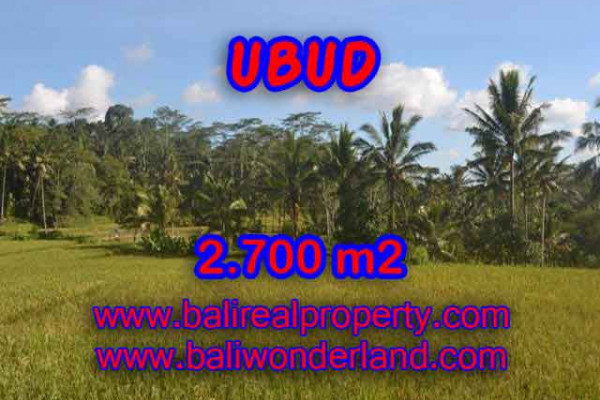 Magnificent Property in Bali, Land for sale in Ubud Bali – 2.700 m2 @ $ 175