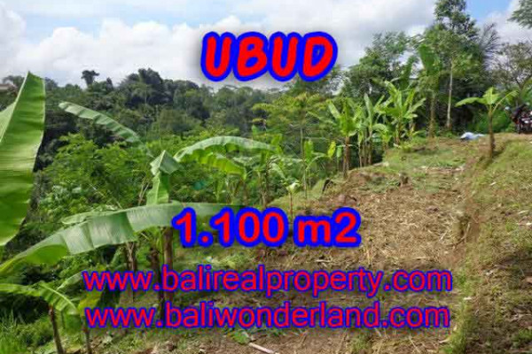 Extraordinary Property for sale in Bali, land for sale in Ubud Bali  – 1.100 m2 @ $ 95