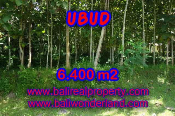 Unbelievable Property for sale in Bali, land for sale in Ubud Bali – 6.400 m2 @ $ 145