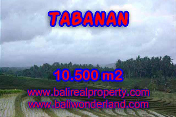 Exceptional Property in Bali, Land in Tabanan Bali for sale – 10.500 m2 @ $ 32