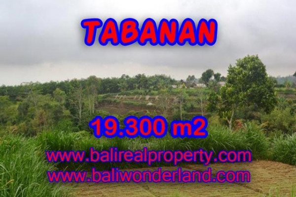 Land for sale in Tabanan Bali, Magnificent view in Bedugul Tabanan – TJTB086