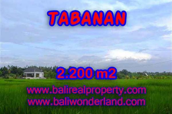 Land for sale in Tabanan, Magnificent view in Tabanan kediri Bali – TJTB097