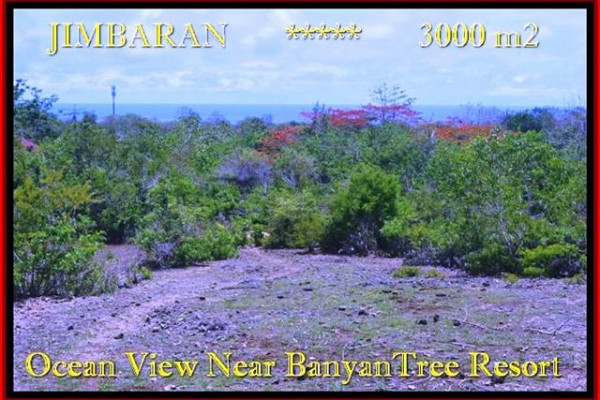 Magnificent PROPERTY 3.000 m2 LAND SALE IN JIMBARAN TJJI090