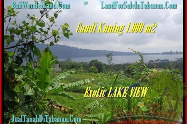 Exotic Tabanan Bedugul BALI LAND FOR SALE TJTB179