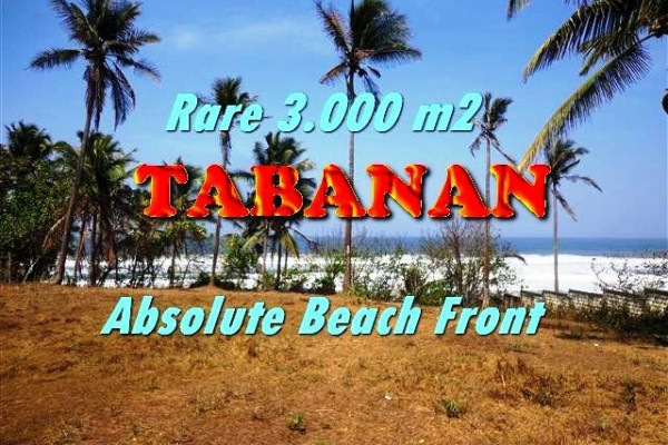Magnificent 3.000 m2 LAND IN TABANAN BALI FOR SALE TJTB168